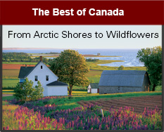 The Best of Canada: From Artic Shores to Wildflowers