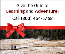 Give a Gift of Learning & Adventure for the Holidays! Road Scholar Gift Certificates Call (800) 454-5768