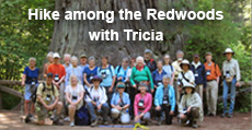 Hike among the Redwoods with Tricia