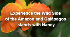 Experience the Wild Side of the Amazon and Galapagos Islands with Nancy